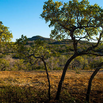 The Canyons, Texas Hill Country Land